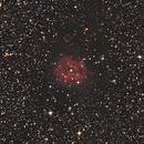IC 5146,                                Bert Scheuneman