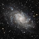 Triangulum Galaxy (Messier 33),                                Israel Barbosa de Brito