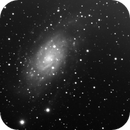NGC2403,                                Perry_T