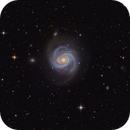 The galaxy M100,                                Axel Rau