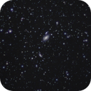 m81 and m82 widefield,                                v