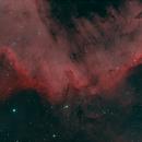 Cygnus Wall - HOO,                                David Johnson