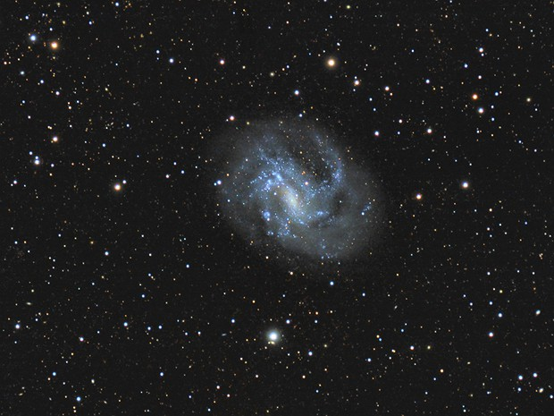 NGC 4395,                                Gene