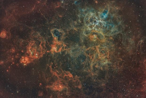 Tarantula Nebula NGC2070,                                Nick Axaris