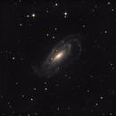 NGC 5033,                                Kevin Galka