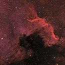 Cygnus Wall in OSC,                                Mark Holbrook