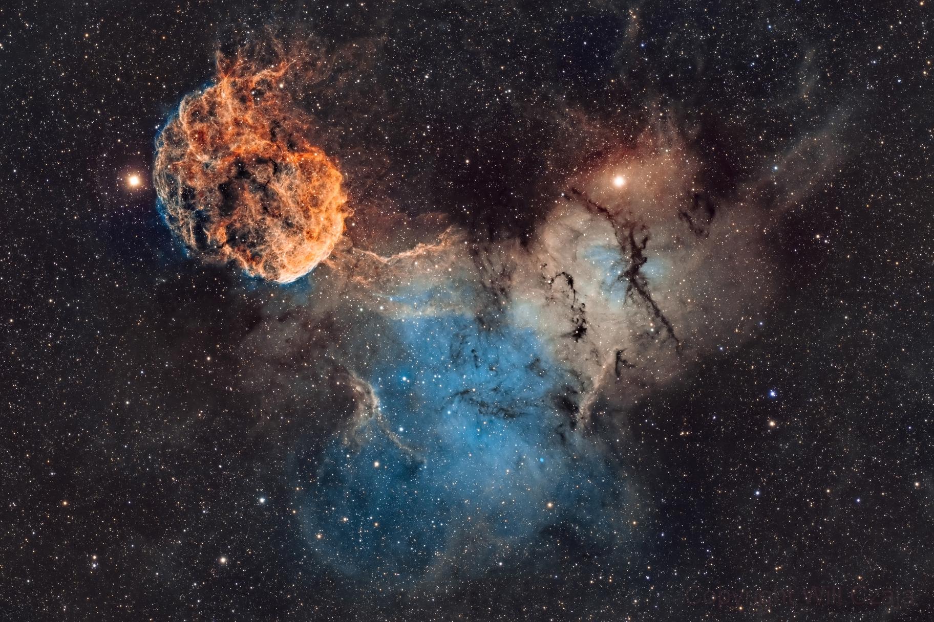 Jellyfish Nebula IC443,                                Will Czaja