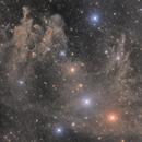 LBN 762/753, the Drunken Dragon Nebula,                                Steed Yu