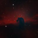 IC434 Horsehead nebula,                                Kees Neve