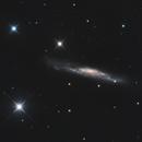 NGC3079 - Barred Spiral Galaxy,                                Derryk