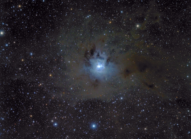 Iris Nebula,                                tonygl