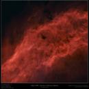Starless NGC 1499 (bicolor),                                Frank Schmitz