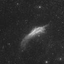 NGC 1499  CALIFORNIA,                                ASTROIDF