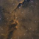 IC 1396 bicolor_crop,                                Luis Campos
