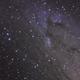 Andromeda,                                erq1