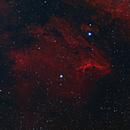 Pelican Nebula IC 5070,                                Sam Rodgers