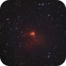 NGC 1491 emission nebula,                                Roberto Coleschi