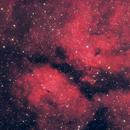 IC1318 Butterfly Nebula,                                Mark Eby
