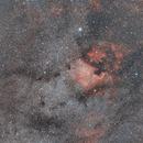 Nordamerikanebel - NGC 7000,                                Leo