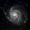 M101 Spiral Galaxy, The Pinwheel,                                Duncan Miller