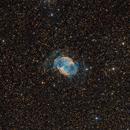 M27, Dumbbell Nebula (100h),                                Almos Balasi