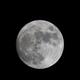 Full Moon,                                Steffen Elste