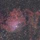 IC405,  Flaming Star nebula,                                KojiTajima
