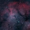 Elephant's Trunk Nebula,                                starbuck