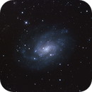 NGC 300 Spiral Galaxy in Sculptor,                                Don Pearce