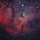 Elephant Trunk Nebula,                                Patrick Hsieh