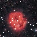 IC 5146 - Cocoon Nebula,                                Rich Sky