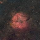 Dusty IC1396 Ha-RGB @ 135mm,                                Sean Murphy