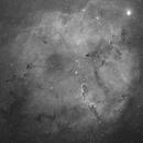 IC 1396,                                Axel Vincent-Randonnier