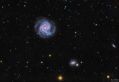 M61 - And a Supernova,                                Jason Guenzel