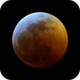 Lunar Eclipse of January 20, 2019,                                Michael Jaramillo