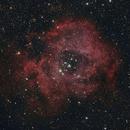 NGC 2244 Rosette,                                Veljko Petrović
