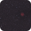 IC5146 - Cocoon nebula,                                Marco Favro