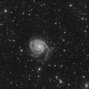 Messier 101,                                Ivo T.