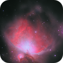 M 42 Orion in LRGB,                                Greg Ray