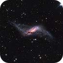 NGC 660 - Peculiar and Polar-Ring Galaxy,                                Terry Robison