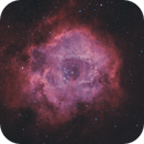Rosette Nebula Bicolor,                                Mike Hislope