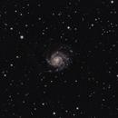 M101 Pinwheel Galaxy,                                Andy Harwood