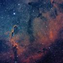 IC 1396 - Elephants Trunk,                                starfield