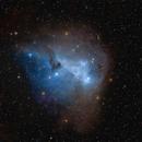 IC447, IC2169,                                wsg
