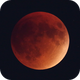 Lunar Eclipse, mid-totality (2015-09-27),                                evan9162