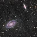 Bodes Galaxy/Integrated Flux Nebula,                                Jeff Dorman