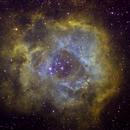 NGC 2246 Hubble Palette,                                Ilja Frenzel