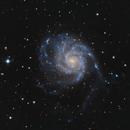 M101 - The Pinwheel Galaxy,                                Alex Roman