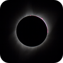 TSE 8-21-17 Third Contact Prominences,                                Tom Robbe