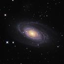 M81,                                Shobhit Raj
